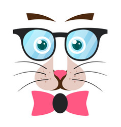 bow cat animal glasses vector image
