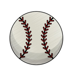 drawing baseball ball equipment vector image