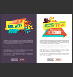 exclusive offer sale discount vector image