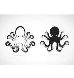 Image of an octopus vector