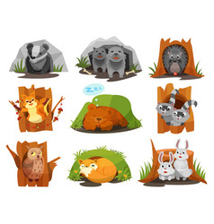 Cute animals sitting in burrows and hollows set vector