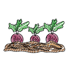 Doodle healthy onion fresh vegetable cultivated vector