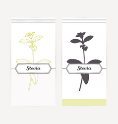 Hand drawn stevia in outline and silhouette style vector