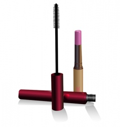 lipstick and ink for eyelashe vector image