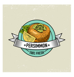 Persimmon vintage hand drawn fresh fruits vector