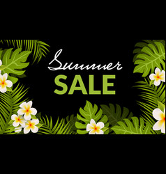 summer sale background palm banner sale tropical vector image
