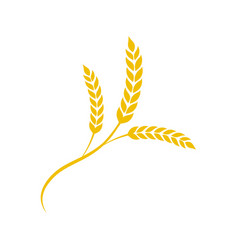 wheat spike in flat style agriculture wheat vector image