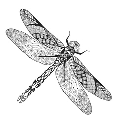 Zentangle stylized dragonfly Sketch for tattoo or vector