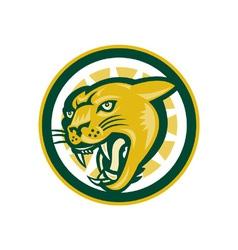 Mountain Lion Puma Big Cat Head vector image vector image