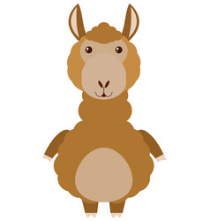 Brown alpaca on white background vector