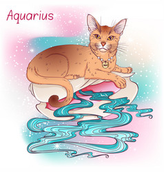 Cat zodiac color aquarius vector