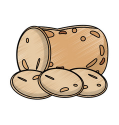 Drawing sliced potato food nutrition vector