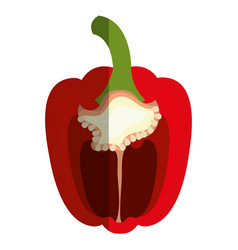Half pepper vegetable healthy food vector