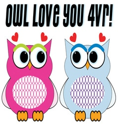 Owl Love You vector image