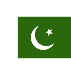 Pakistan flag image vector