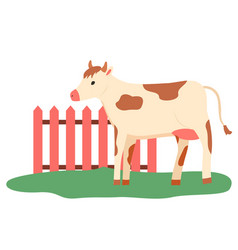 pasture cattle cow walking outdoor farm vector image