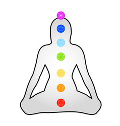 The seven chakras with their respective colors and vector