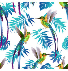 hummingbird and tropical flowers background vector image vector image