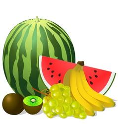 still life fruits banana watermelon grape kiwi vector image vector image