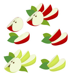 apple fruit red and green apple quarter slices vector image