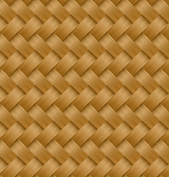 Cane woven fiber seamless pattern vector image