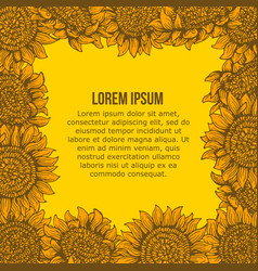 card with graphic sunflower frame vector image