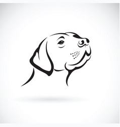 Dog head labrador retriever on white background vector