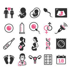 Pregnant icons set vector
