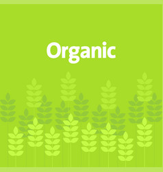 Simple graphic of green leaves and plant vector