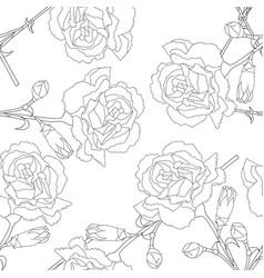 Carnation flower on white background vector