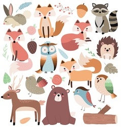 Woodland Animals Volume 2 vector image