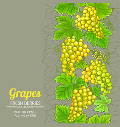 grapes branches pattern on color background vector image