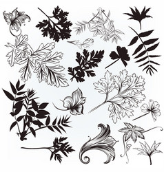 Hand drawn leafs silhouettes vector