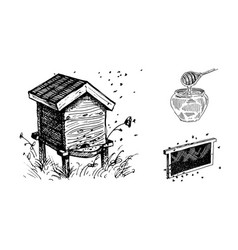 Honey beehives pots honey vector