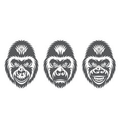 monochrome set three gorilla heads with vector image