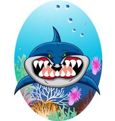 shark cartoon vector image