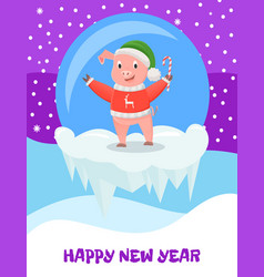 pig in hat and knitted sweater with cane candy vector image