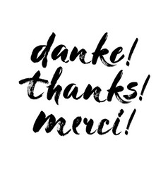 Thank you lettering in english french german vector