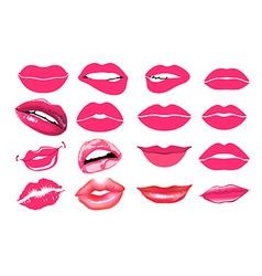 collage pink lips Set of isolated women lips on vector image vector image