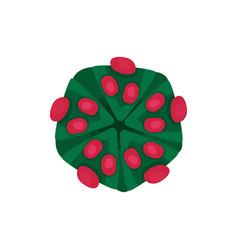 structure of dangerous virus hazardous vector image