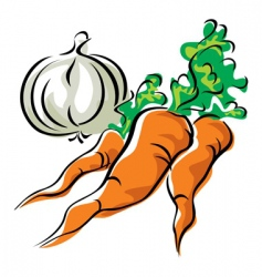 carrots and garlic vector image