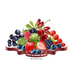 Mix of fresh berries isolated on white background vector image