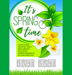 springtime greeting holiday poster design vector image vector image