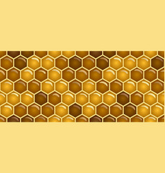 seamless pattern full color background honey vector image