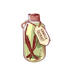 Vanilla extract oil bottle isolated icon vector
