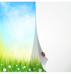 Green sunny natural background vector image vector image