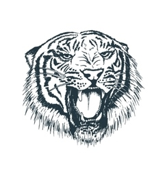 Tiger portraithand drawn style vector image