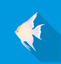 Angelfish common fish icon flat singe aquarium vector