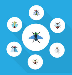 Flat icon housefly set of dung fly bluebottle vector
