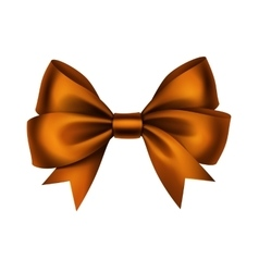 Orange Satin Gift Bow Isolated on White vector